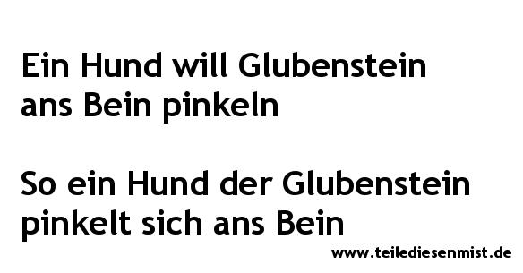 002_Glubenstein_Hund