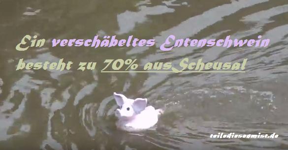 entenschwein