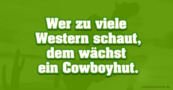 tdm-western